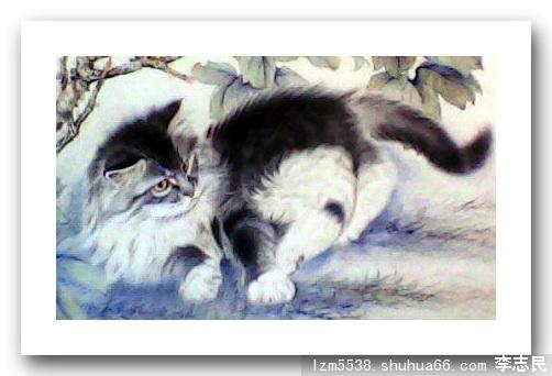 李志民的相册 - 李致岷的国画工笔,小写意动物